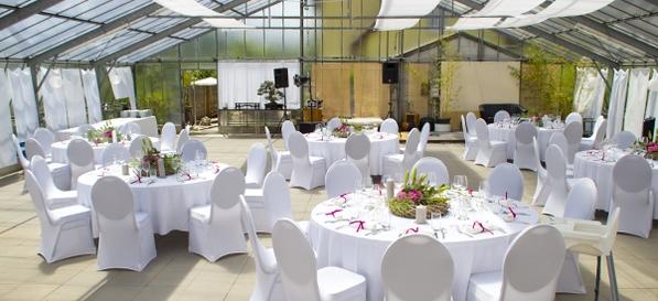 Hochzeit Im Bonsaigarten Mit Grossem Gewachshaus In Neckargemund Hochzeiten Feiern